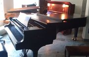 Piano Steinway model D-274 for sale